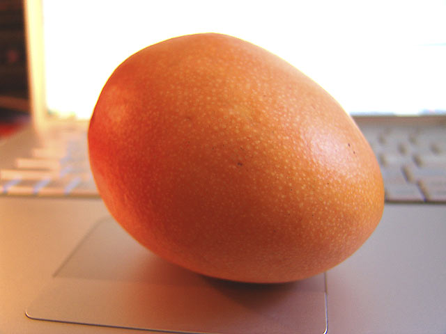 The Best Raw Diet Part 1 :: Picture of a delicious, fresh organic mango... one of the great treasure of organic raw food delectables.